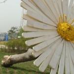 Nature.Art-цвете