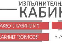 Изпълнителната власт – Кабинетът и неговите функции