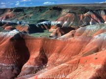 Боядисаната пустиня в Аризона
