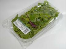 Биопластмасите – по-добрата алтернатива за нашата планета