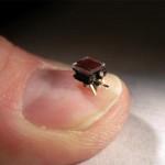 tiny-swarming-robots